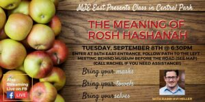 The Meaning of Rosh Hashanah OUTDOOR CLASS Rabbi Avi Heller Tues @ 6:30pm by Manhattan Jewish Experience (MJE) @ East 84th Entrance of Central Park Take E 84th Entrance to East Drive, Behind Museum New York, NY 10025 United States      