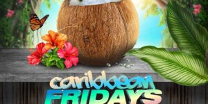 Caribbean Fridays At Jimmys by City Elite Group Follow 7248 followers @ Jimmy's 38 NYC  156 West 38th Street  New York, NY 10018  United States        
