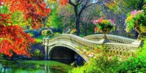 Paint In Central Park by Social Events Follow 12332 followers @ Central Park Central Park New York, NY 10019 United States      